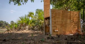 How This Spot (in Mozambique) Got Its Leopard